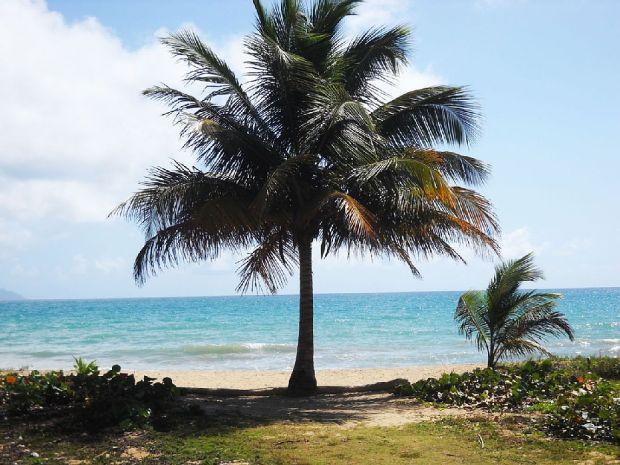 palmira_beachaccess