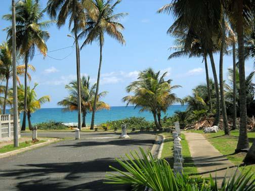 palmira_beachview